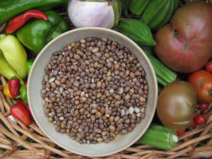 Bowl filled with shelled cowpeas surrounded by garden vegetables including okra, tomatoes, and peppers.