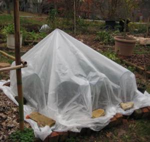 Garden plant protection provided by spun row cover over supports that hold the cover away from the plants.