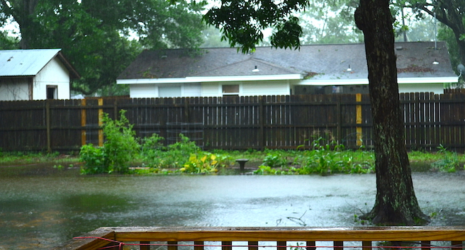 Backyard and garden flooded by rains from tropical storm Cristobal.