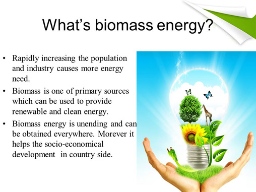 What S The Biomass Energy S Impact On Ecological Environment