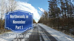 Northwoods in November Part 1