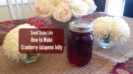 Cranberry-Jalapeno Jelly; How to Make Cranberry-Jalapeno Jelly; Recipes; How To; Do It Yourself; food preservation; canning