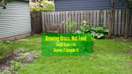 Growing Grass; Garden; Minimalism; Moving; Podcast