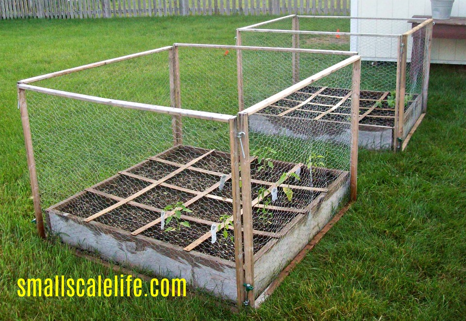 Sqaure Foot Gardening; Garden; Minimalism; Moving; Podcast; Weeds