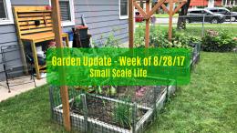 Square Foot Gardening; Garden; Minimalism; Urban Gardening; Podcast; Brand; Peppers; Facebook; trellis; tomatoes; cucumbers