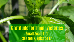 Square Foot Gardening; Garden; Minimalism; Moving; Podcast; Brand; Peppers; Facebook; small victories