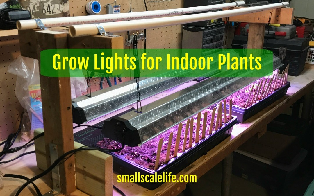 Grow Lights For Indoor Plants Small Scale Life