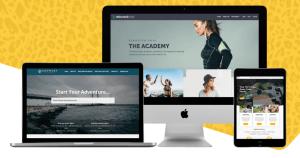Website Cheetah; SEO