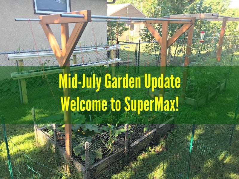 Mid-July Garden Update – Welcome to SuperMax