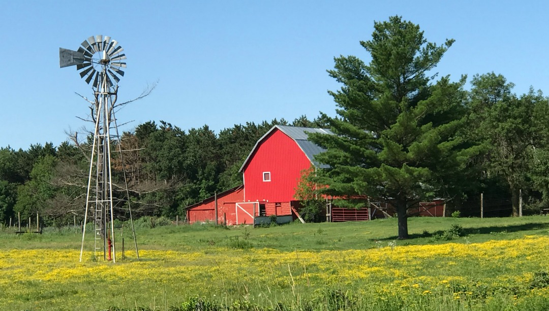 Definition of Homesteading, Homestead, Urban Homestead, fruit trees, edible landscape, Sustainable Life, Rural Living, Rural Life, Frugal Living, reduce debt, living simple, simple life, simple living, tribe, community, tradition, mentors, Small Scale Life Podcast