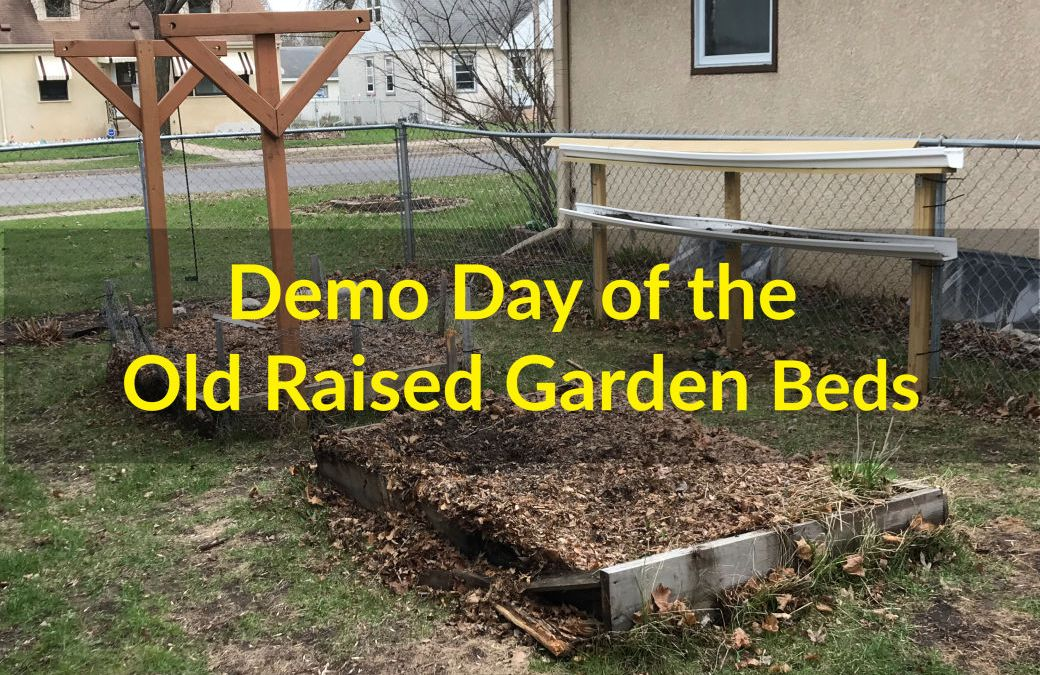Demo Day, Old Raised Bed Gardens