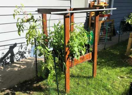 How to Extend my Garden Season, Patio Salsa Self-Watering Garden