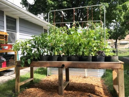 Raised Bed Garden, Self Watering, Table Garden, Hybrid Rain Gutter Grow System, Grow Bag, Root Pouch