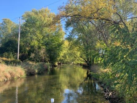 Creek, Flow; Palmyra, Wisconsin