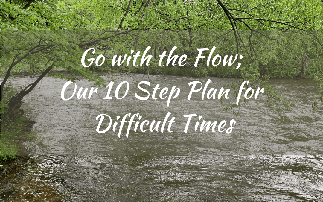 Go with the Flow; Our 10 Step Plan for Difficult Times