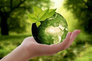 Green globe in a hand