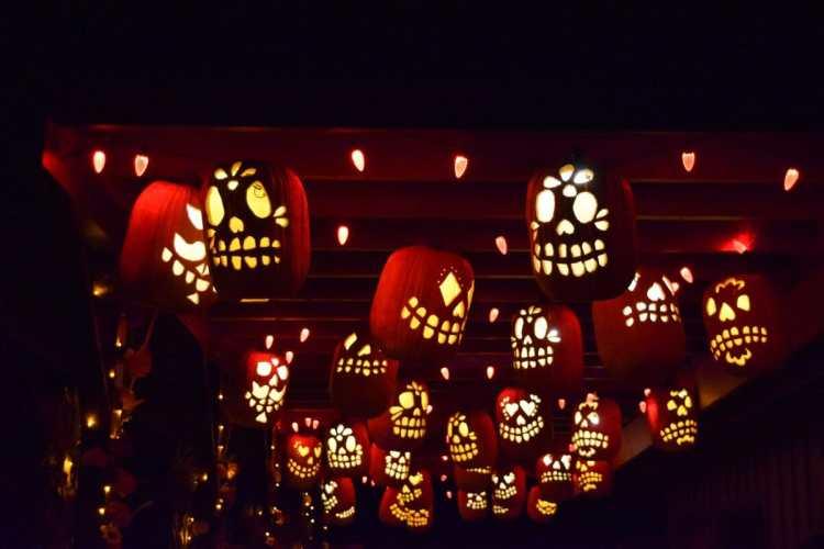 pumpkin nights auburn