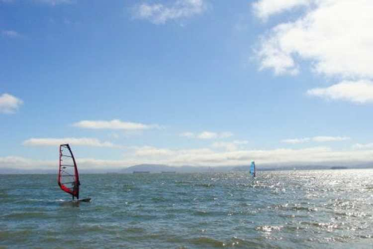things to do in alameda