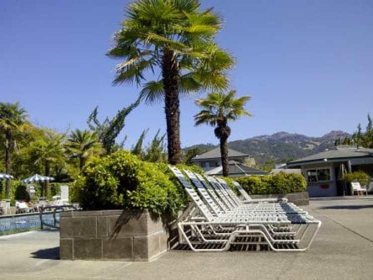calistogia hot springs