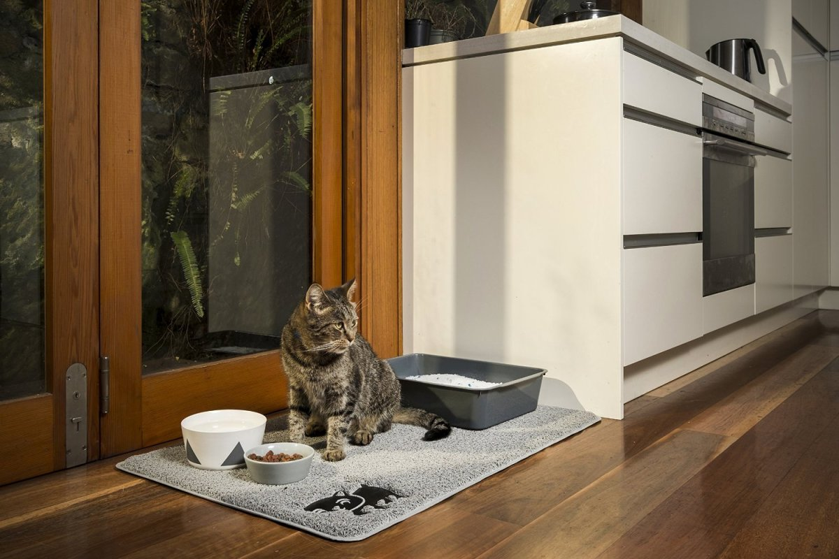 The Complete Guide To Cat Litter Mats The Smart Cat Guide