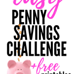 Penny Challenge is the fun way to start saving money without breaking your budget! Get the free 365 day penny chart printable, 52 week penny chart printable, and the monthly penny chart printable. These printables are perfect for adding to your bullet journal. Choose the best way to track your savings and get started today! #savingmoney #freeprintables