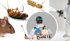 مكافحة الحشرات في ابوظبي