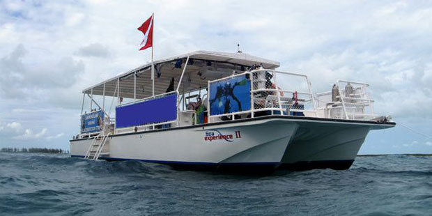 Sea Experience Glass Bottom Boat and Snorkeling 1