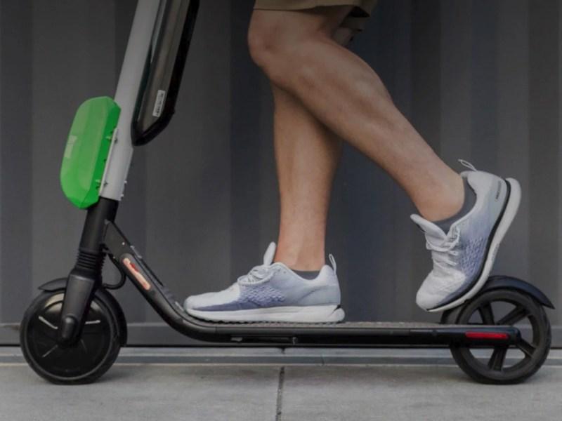 Lime Roller Header