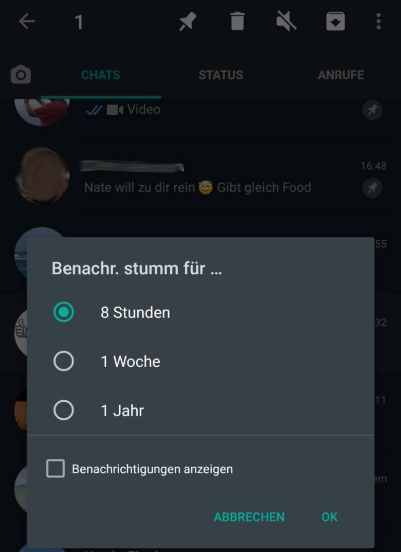 Whatsapp Chat Stummschalten (2)