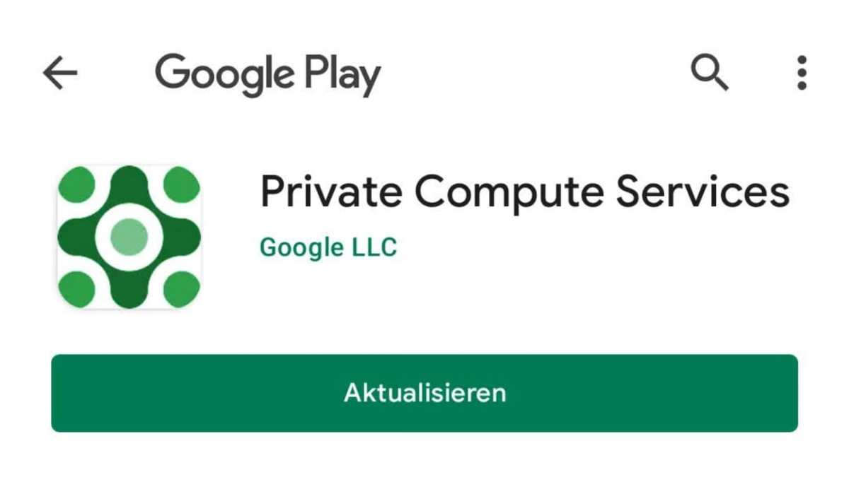 Private Computer Services Google Play