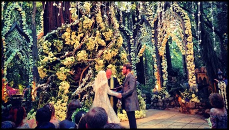 sean parker wedding fine for redwoods