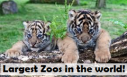 10 Largest zoos in the world in 2013