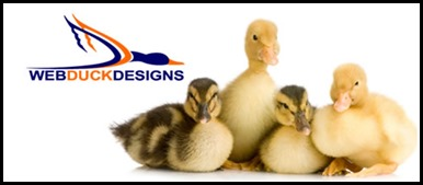 How to get services from Web Duck Designs