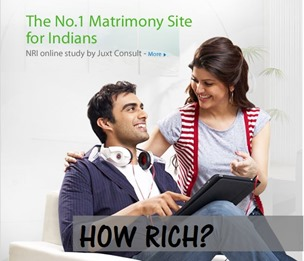 How Bharat Matrimony Makes Money Online