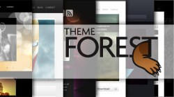 Make money with theme forest