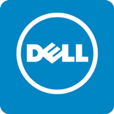 Dell largest company