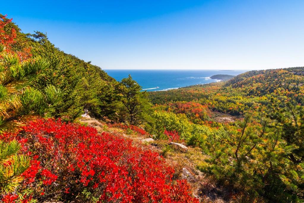 acadia national park autumn.
