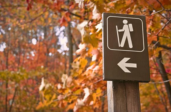 Amazing Fall Hikes
