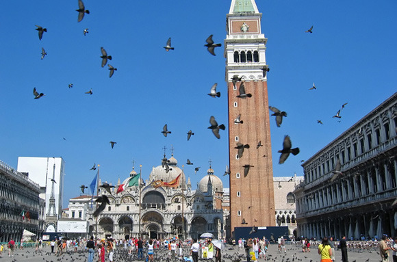 Feeding The Pigeons In Venice