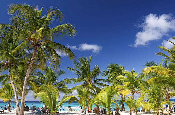 Bonus Deals: Caribbean And Beyond