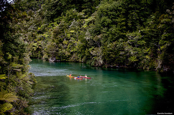 6 New Zealand Adventures That Anyone Can Do