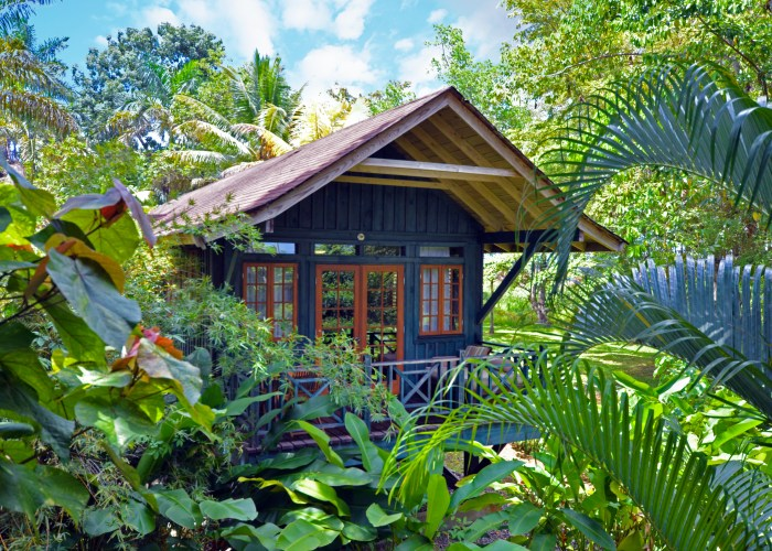 Treehouse hotel in Jamaica