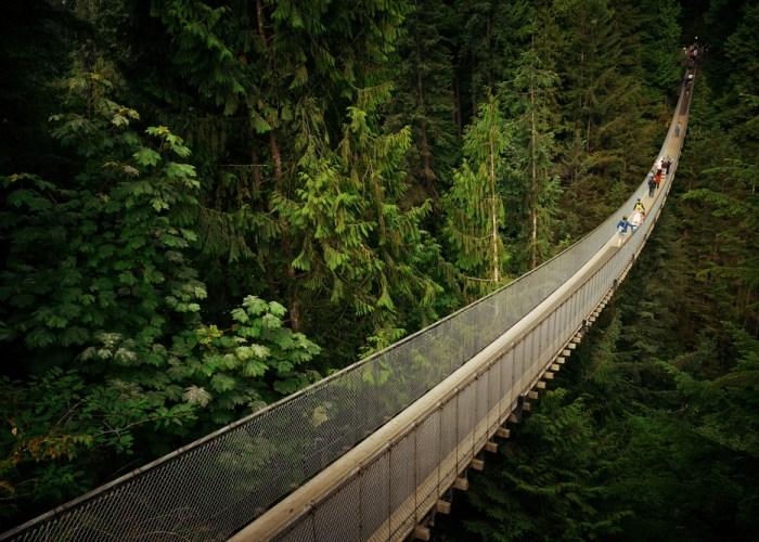 what to do in vancouver suspension bridge
