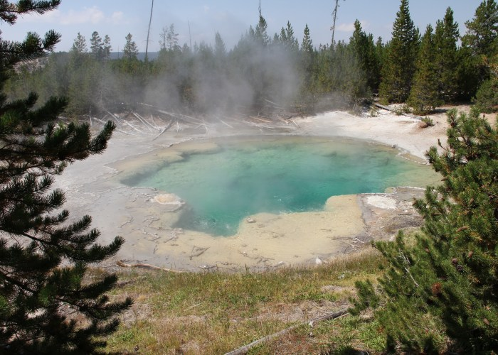 Yellowstone & Salt Lake City: 4-Day Tour from $373