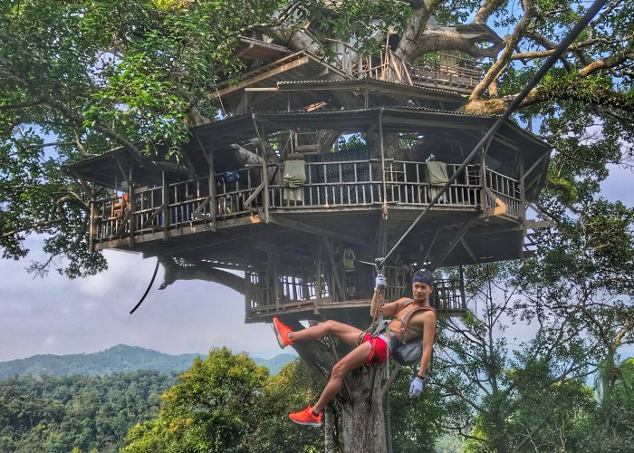 10 Most Incredible Tree House Hotels in the World