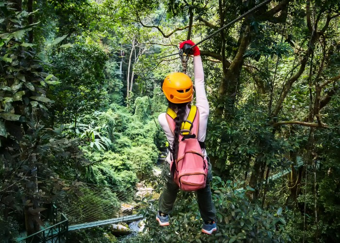 8 Best Places to Zip-Line in the World