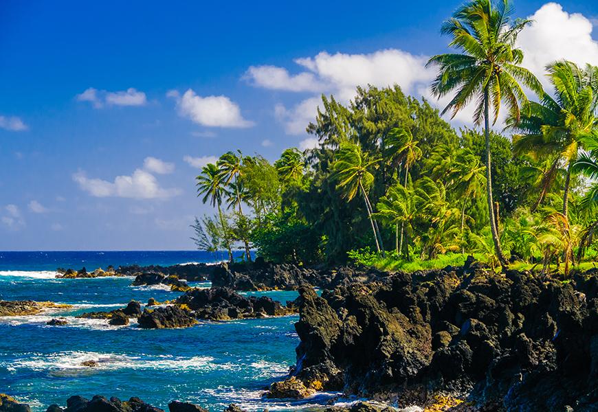 rocky coast maui