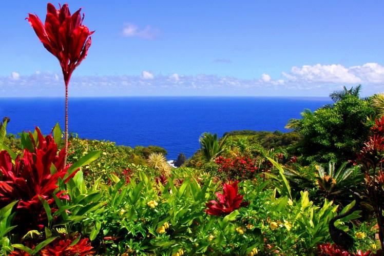 garden in hawaii
