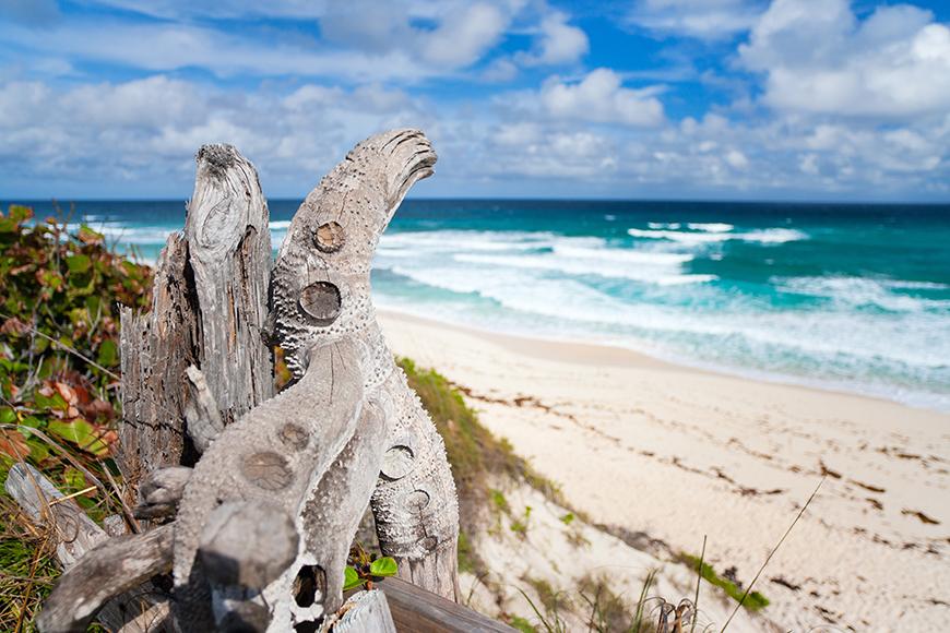 eleuthera beach bahamas.