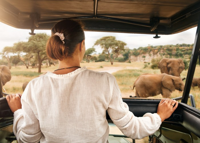 woman tourist on african safari.